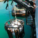 ILMA LAVORI MARITTIMI OFFSHORE | Assistenza Diving